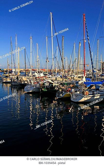 Boats in the harbour, Santa Cruz, Tenerife, Canary Islands, Spain, Europe
