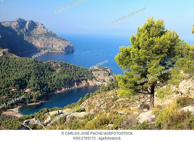 Views from Torre de Sa Mola: Cala tuent and Sa Costera. Serra de Tramuntana, Majorca, Balearic Islands, Spain
