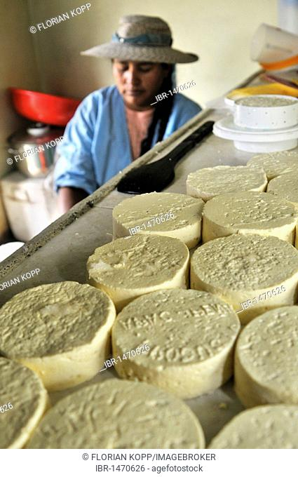 Woman in the production of fresh cheese in the Penas Valley, Oruro Department, Bolivia, South America