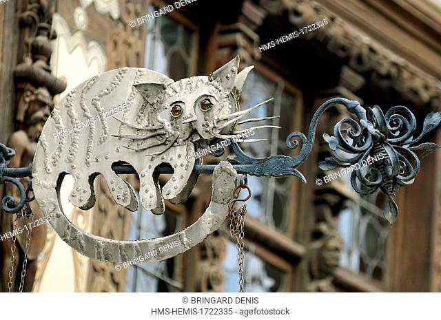 France, Bas Rhin, Saverne, Maison Katz dated 17th century, sign cat of the Taverne Katz