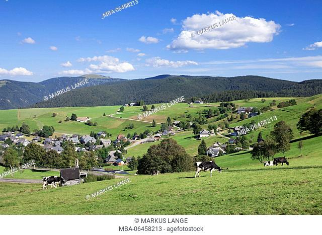 View from the Schauinsland about Hofsgrund to the Feldberg, Black Forest, Baden-Wurttemberg, Germany