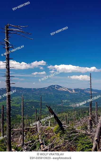 On the Top of Polom Mountain, Sumava National Park, the Southwestern Bohemia, Czech Republic