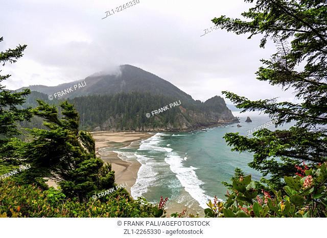 View of Oswald Beach Oregon coast trail Cape Falcon Oswald West State Park