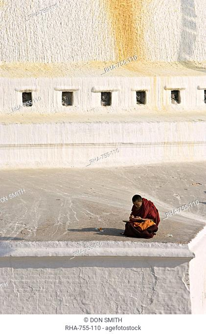 Tibetan Buddhist monk reading scriptures at the Boudha stupa at Bodhanath, Kathmandu, Nepal, Asia