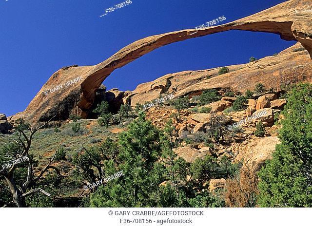 Landscape Arch, Devils Garden Trail Arches National Park, Utah, USA