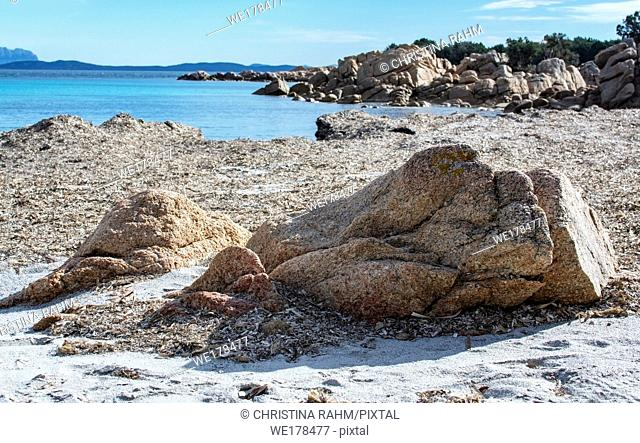 Green water and dry seagrass on a winter beach in Costa Smeralda, Sardinia, Italy in March