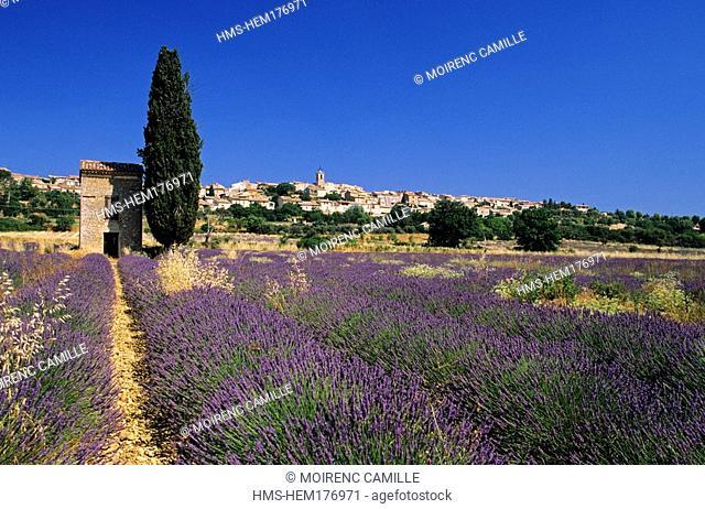 France, Alpes de Haute Provence, Verdon Regional Natural Park, Puimoisson