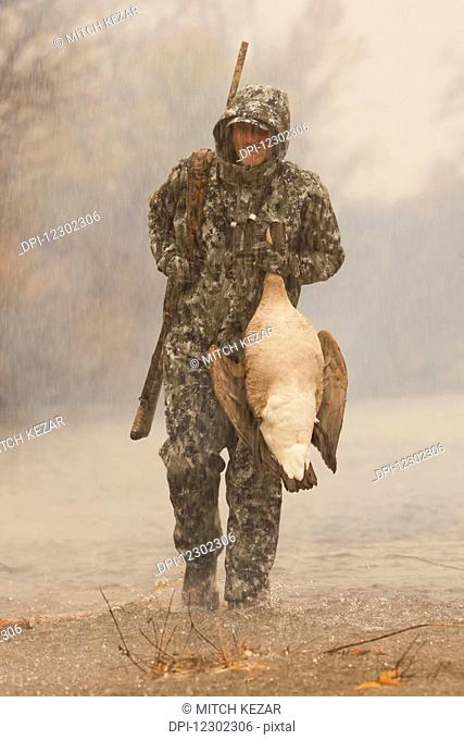 Goose Hunter In Rain Carrying Dead Goose
