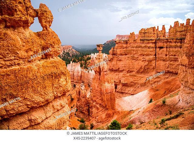 Vista of colorful sandstone pinnacles and spires in Bryce Canyon N.P. in Utah