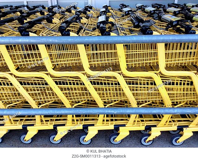 Array of shopping carts outside a shopping complex, Halifax, Nova Scotia