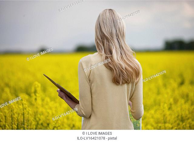 A young woman painting a picture of a rape seed field in flower, rear view