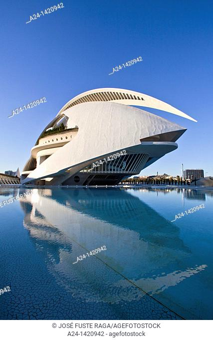 Spain-Valencia Comunity-Valencia City-The City of Arts and Science built by Calatrava-Joan Ripolles sculpture and the Palace of Arts
