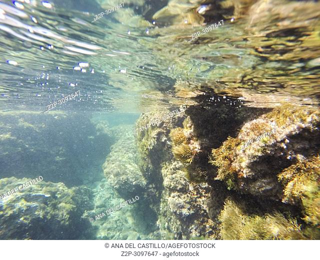 Underwater shoot in Cabo de Palos Murcia Spain