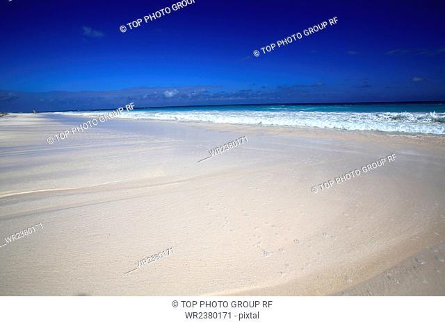 North America the Bahamas Island Paradise pink sand beach
