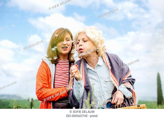Two mature female friends blowing dandelion clock, Tuscany, Italy