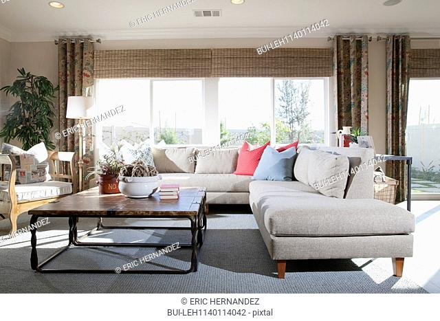 Contemporary living room with sectional sofa at home