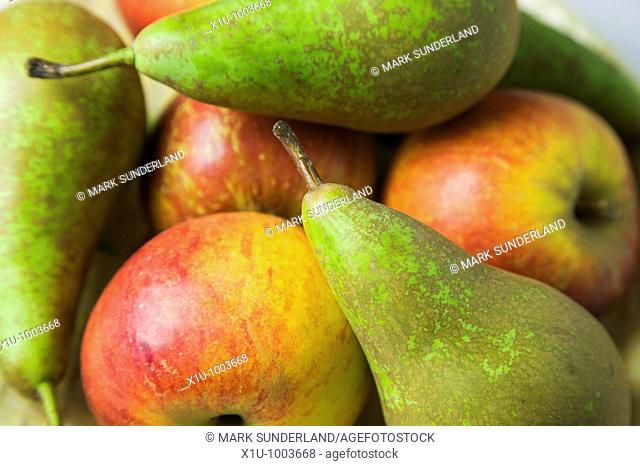 English Cox Apples and Conference Pears