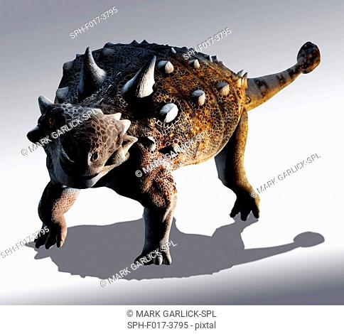 Computer illustration of an Euoplocephalus sp. dinosaur. This herbivorous armoured dinosaur lived during the Late Cretaceous Period (around 100 to 66 million...