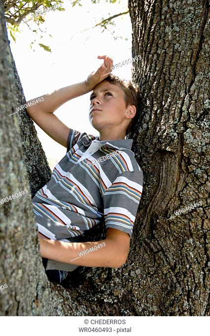 Side profile of a boy sitting on a tree
