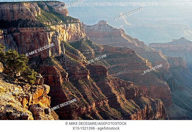 An inside look at the Grand Canyon from the North Rim where few people visit