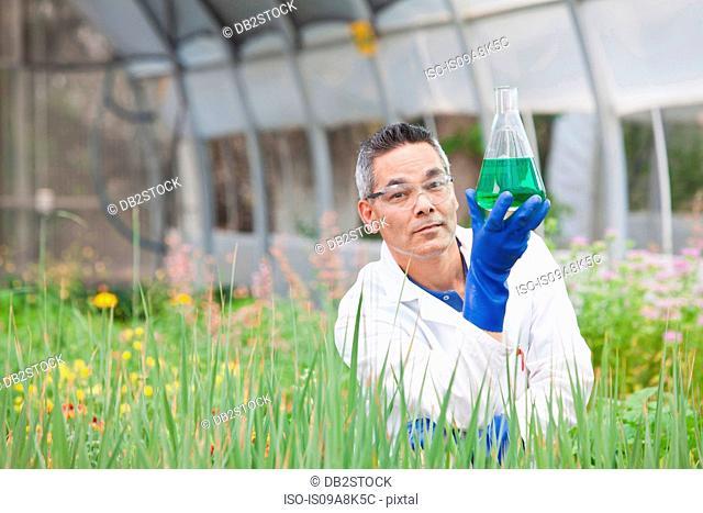 Mature scientist holding liquid in volumetric flask in greenhouse, portrait