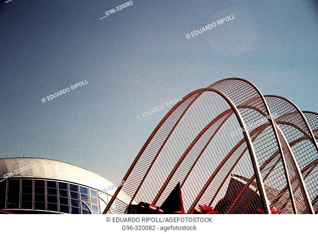 City of Arts and Sciences. Valenca. Spain