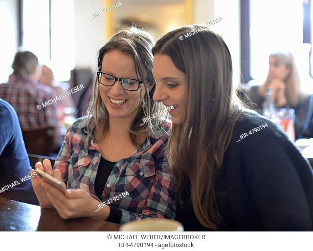 Young women looking at smartphones and laughing, Portrait, Café, Stuttgart, Baden-Württemberg, Germany