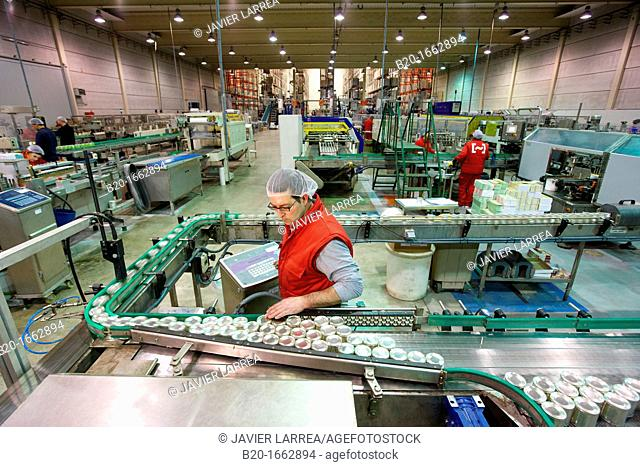 Labeling and packaging canned vegetables, Cans, Canning Industry, Agri-food, Logistics Center, Grupo Riberebro, Alfaro, La Rioja, Spain