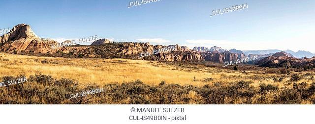 Panoramic view, Zion National Park, Springdale, Utah, USA