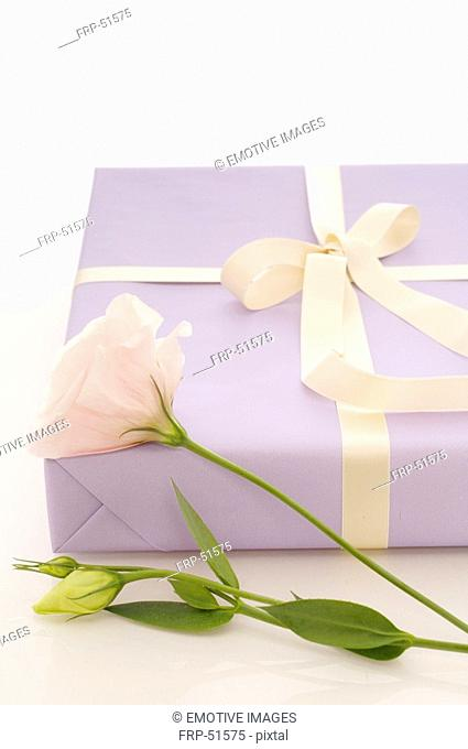 Gift with white flower