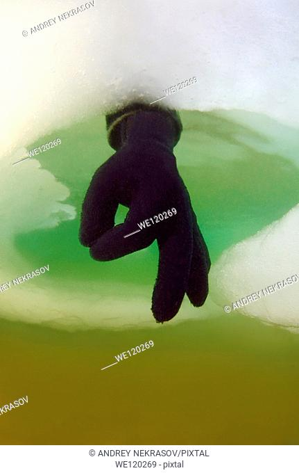 Diver's hand giving the OK sign, subglacial diving, ice diving, in the frozen Black Sea, a rare phenomenon, last time it occured in 1977, Odessa, Ukraine