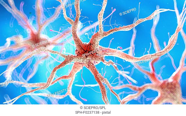 Illustration of a healthy human nervous cell