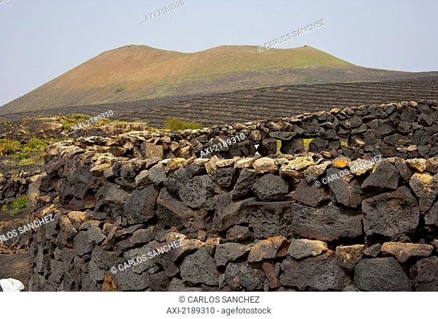 Lanzarote Island. Belongs To The Canary Islands And Its Formation Is Due To Recent Volcanic Activities. Spain