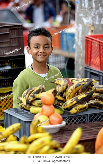 Child labor, boy, 8 years, selling vegetables at a street market, Barrio 20 de Julio, Bogota, Colombia