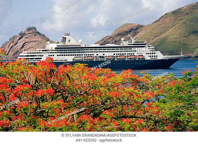 Stopover in Nuku Hiva island, Taihoae (main village of the North islands). Cruise ship anchored in the bay, flamboyant tree at fore (Royal Poinciana