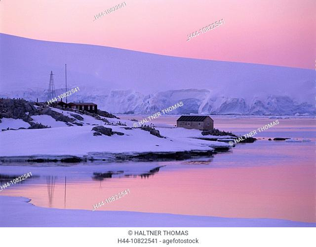 Antarctic, Antarctic, Antarctic Ocean, cruise, port Lockroy, British research station with museum, 02.00 at night, moo