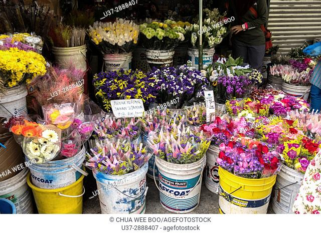 Flower arrangements in buckets, packed for sale at farmers market, Cameron Highland, Pahang, Malaysia