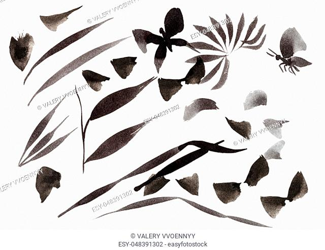 training drawing in sumi-e (suibokuga) style - brush strokes shaped leaves and butterflies by black ink on white paper