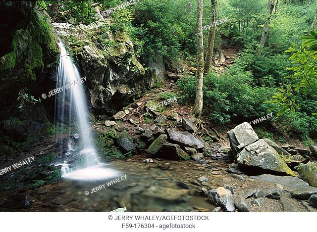 Grotto Falls. Great Smoky Mountains National Park. Tennessee. USA