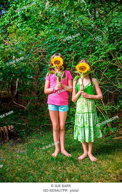 Two young girls holding sunflowers in front of faces