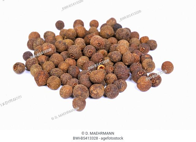 allspice, pimento (Pimenta dioica), dried fruits, allspice corns