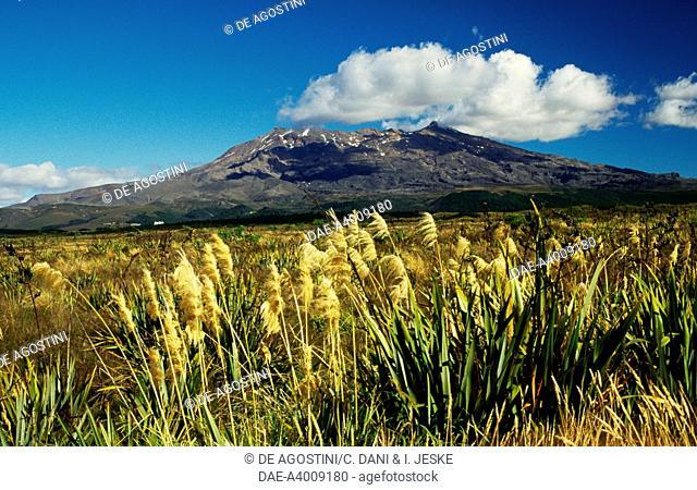 Mount Ruapehu (2797 metres), Central Plateau, Tongariro National Park (UNESCO World Heritage List, 1990), North Island, New Zealand