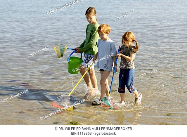 Children walking on the beach, seaside with fishing net and bucket at the Adria, Bibione, Venetia, Venice, Italy, Europe