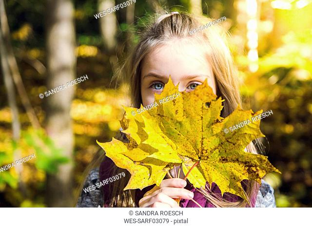 Little girl hiding her face behind autumn leaves