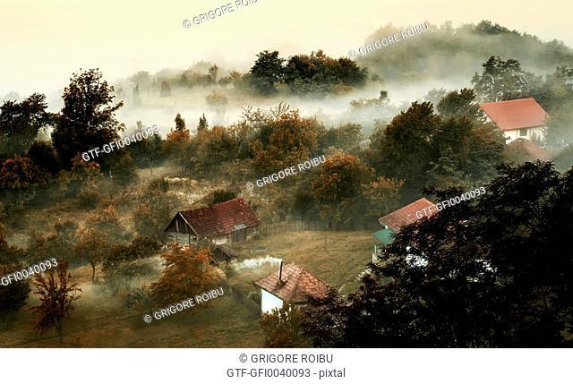 Smog and fog