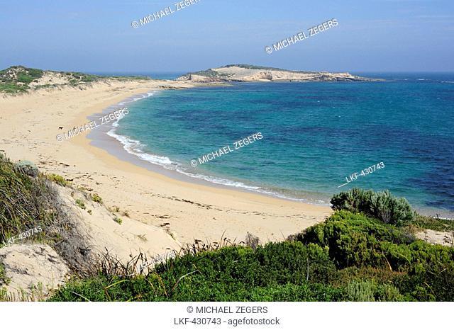 Beach, coast near Beachport, Southern Ocean, South Australia, SA, Australia