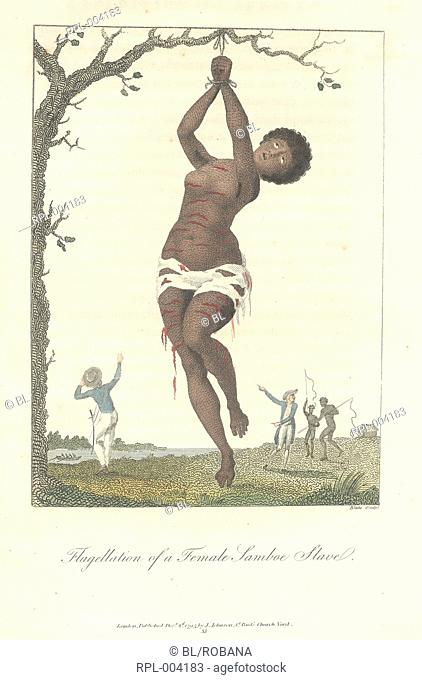 Flagellation of a female slave hanging by her wrists from a tree. Full title of image is, Flagellation of a female Samboe slave