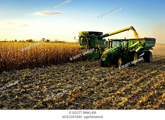 Agriculture - A John Deere combine (model 9670 STS) harvests mature grain corn in late afternoon Autumn light while unloading the corn into a grain wagon