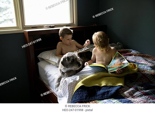 Brothers reading books in bed with dog