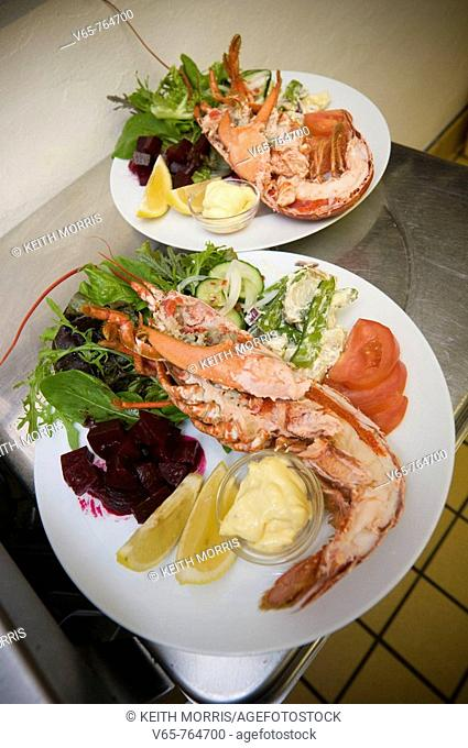 two platters of cardigan bay fresh lobster salad in the Hive on the Quay seafood restaurant, Aberaeron, Ceredigion, Wales UK